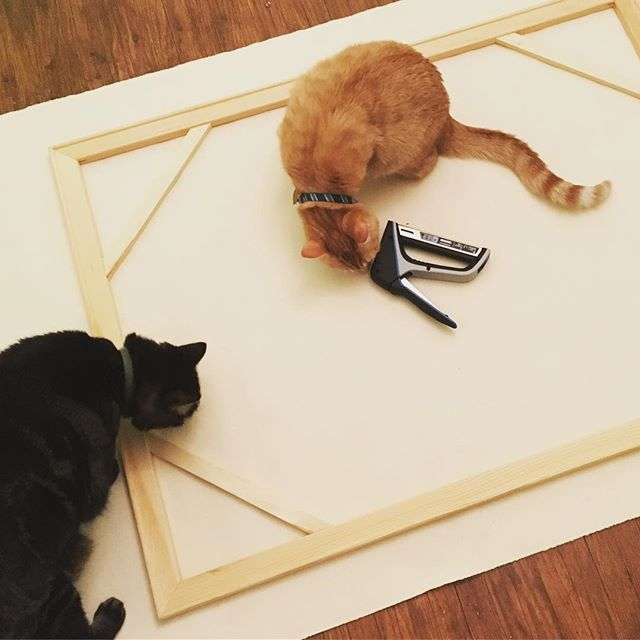 I found a roll of canvas in the closet, so I decided to try out stretching my own on the old stretcher bars I had leftover from the beach painting. Luckily I had help! -