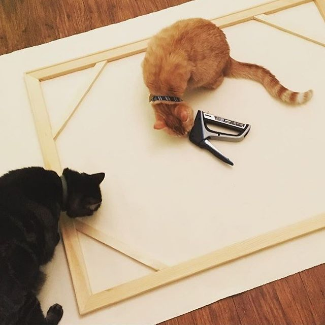 Our staple guns are a hit with furry friends, too. After discovering some canvas in her closet, artist @artyfartyslumberparty used the TacMate to stretch canvases. She loved the rubberized grip of our tool! Click the link in our profile to take a closer look at the tool, see what other people are saying about it and watch a video.