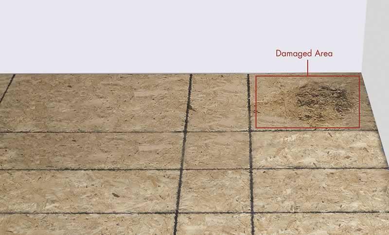 damaged-subfloor-arrow-project-step1a.jpg