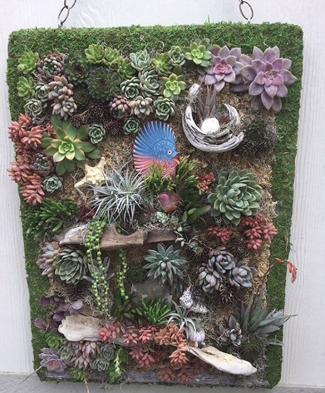 """I love my new staple gun!! I tried using a regular craft staple gun on a living succulent wall hardwood frame stapling chicken wire to the frame and I almost crippled my hand for only 2 tries. Got online found this!! It works so GREAT!! I do NOT have to use a hammer to pound the staples in!!""  and quote from @the_mermaid_garden 